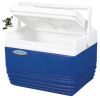 Totai 11 L Cooler Box